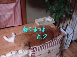 2011720_020