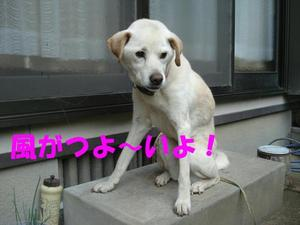 2011720_034_2